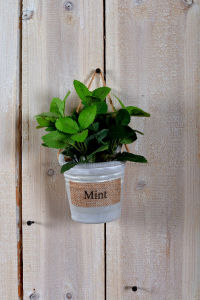 Different Artificial Plants as Hanging Decorations with Paper Mache Pot pictures & photos