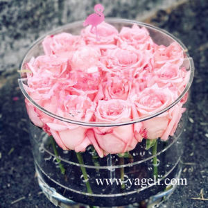 Custom Made Flower Acrylic Flower Box Design for You pictures & photos