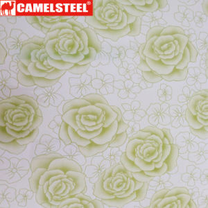 Hot Wholesale/Flowers Pattern/Printed Steel Coil/Best Price pictures & photos