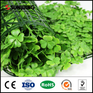 50 X50cm Customized Mini Artificial Boxwood Hedge for Backdrops pictures & photos