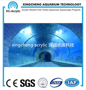 Oceanarium Project Acrylic Tunnel pictures & photos