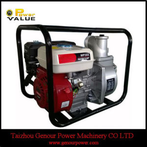 China Pump Supplier Gasoline High Pressure Pump pictures & photos