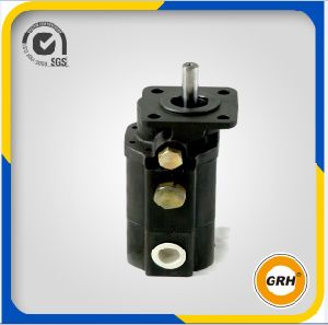 External Hydraulic Gear Oil Pump / Log Splitter Cast Iron Pump pictures & photos
