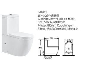 Washdown Two-Piece Bathroom Toilet (87001) pictures & photos