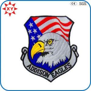 Custom Irregular Eagle Embroidery Patch pictures & photos