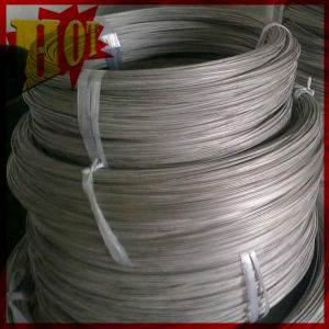 3.0mm Gr 5 ASTM B 863 Titanium Wire with Best Price pictures & photos
