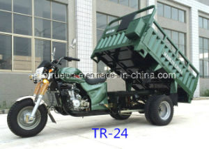 EEC 250cc Water Cooling Cargo Tricycle pictures & photos