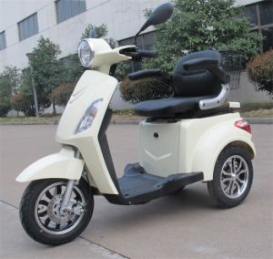 800W 60V20ah Electric Tricycle in New Colour