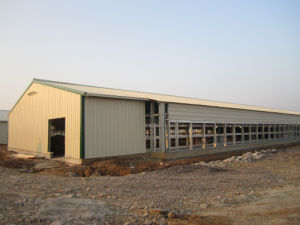 Fully Automatic Poultry Farm Machinery and Prefab Steel Structure Poultry House pictures & photos