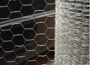 Reverse Twist Hexagonal Wire Netting Trade Integration pictures & photos