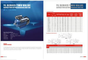 YL Single Phase Two-Value Capacitor Motor pictures & photos