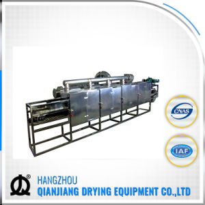 Dw Series Continous Food and Vegetable Conveyor Belt Dryer pictures & photos