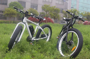 26inch Fat Tire Electric Mountain Bike pictures & photos