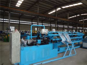 Lw30/80-4 Diamond Mesh Making Machine pictures & photos