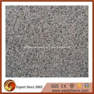 Building Material Natural Granite/Marble/Quartz Stone Tiles for Floor/Flooring/Stairs/Wall/Bathroom/Kitchen Tile (G603/G654/G664/G682/G684) pictures & photos