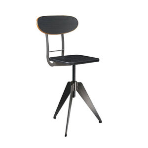 Hot Sale Height Adjustable Industrial Stool with Back (FS-Scew14035-1) pictures & photos