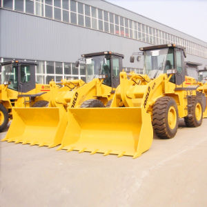 China Small and Medium Sizes Loaders pictures & photos