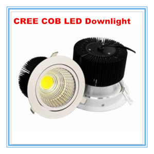 CREE COB LED 5inch 20W LED Down Light pictures & photos