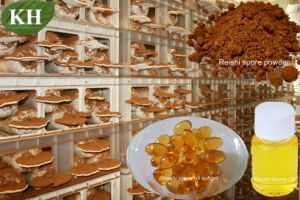 Reishi Spore Oil Softgel CO2 pictures & photos