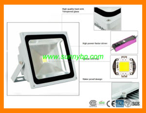 Sliver Housing Colorful 24volt LED Flood Light for Garden pictures & photos
