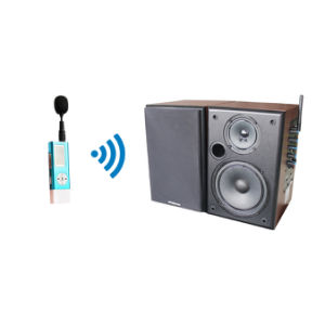Professional 2.4GHz Wireless Mini Microphone and Brown Speaker System pictures & photos