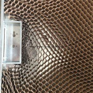 Metal Door for Activity Room pictures & photos