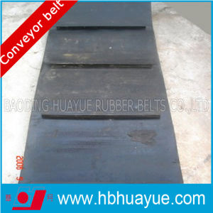 Ep/Nn Cc Special Pattern Conveyor Belt pictures & photos