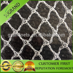 Cheap HDPE with UV Protection Anti-Bird Nets pictures & photos