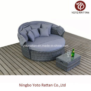 Outdoor Grey Large Daybed (1515) pictures & photos