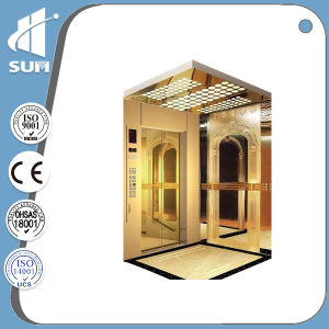 Hydraulic Hairline Stainless Steel Cabin Passenger Elevator pictures & photos