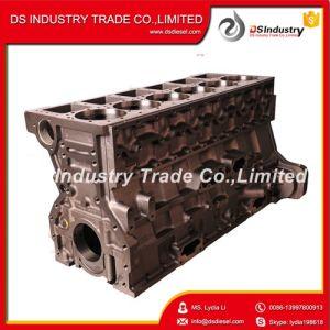 Cummins Diesel Engine M11 Cylinder Block 4060393 pictures & photos