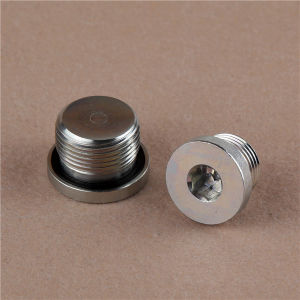Bsp Male Captive Hollow Hex Plug (4BN-WD) Adapter pictures & photos