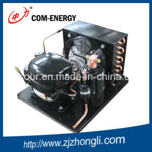 Embraco Condensing Units pictures & photos