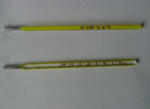 Big Capacity New Product Fahrenheit Bath Thermometer pictures & photos