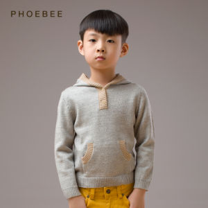 Phoebee 100% Wool Spring/Autumn Boys Knitted Sweaters with Hood pictures & photos