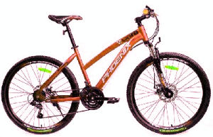 2017new Model Lady Mountain Bike/Bicycle/MTB pictures & photos