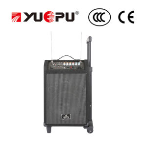Portable PA Speaker with USB, SD and Two Mics