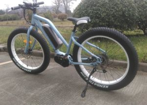 New Femele Fat Tire Electric Bike with Center Motor pictures & photos