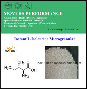 Top Hot Selling Instant L-Isoleucine Microgranular pictures & photos