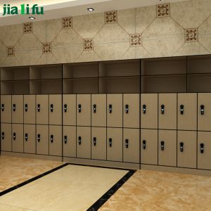 Jialifu Compact Laminate Locker with Hanger and Shelf pictures & photos