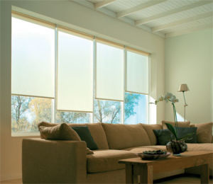 Sunshade Roller Blind with Different Type Fabric pictures & photos
