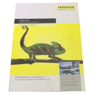 4 Color Printing Catalog with Oil Varnished pictures & photos