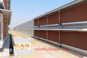 Feed Hopper for Poultry House with High Quality and Low Price pictures & photos