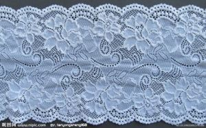 Hot Selling Fashion Nylon Lace Trim for Bra pictures & photos