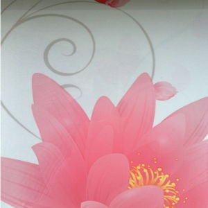 High Gloss PVC Plastic Film/PVC Decorative Sheet pictures & photos