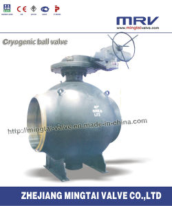 Trunnion Mounted Cryogenic Ball Valve with Worm Gear