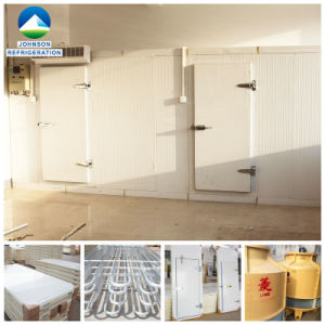 Cold Storage Cooling Room for Beef