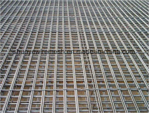 PVC Coated/ Stainless Steel/Electro Galvanized Welded Wire Mesh Panel pictures & photos