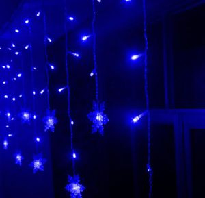 2X3m Outdoor Decoration PVC Wire Holiday LED Christmas Colorful Curtain Light pictures & photos