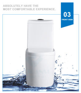 Weidansi Ceramic Wash Down S-Trap One Piece Toilet (WDS-T6107) pictures & photos